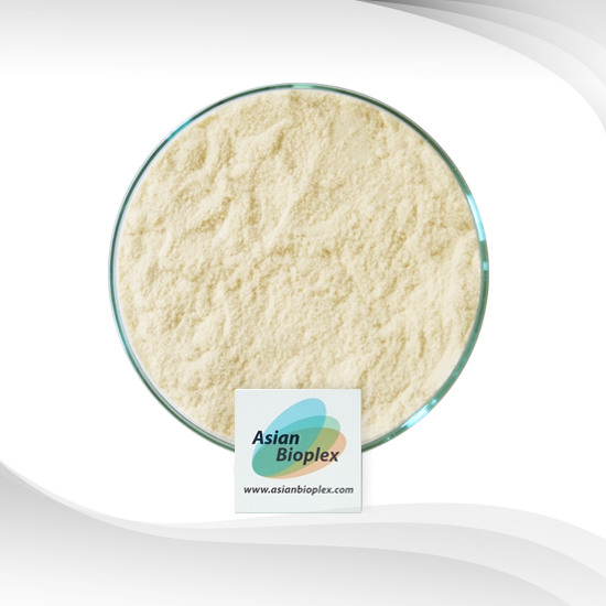 Whey Protein Concentrate 80% (USA) : เวย์โปรตีนคอนเซนเทรต 80% (USA)
