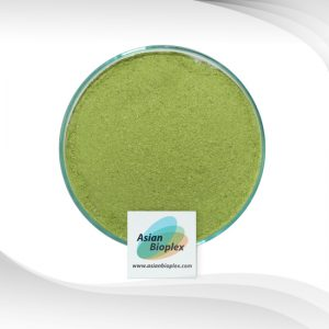 Broccoli Powder - Broccoli Extract