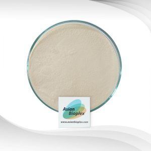 Collagen Type 2 - Collagen Peptide